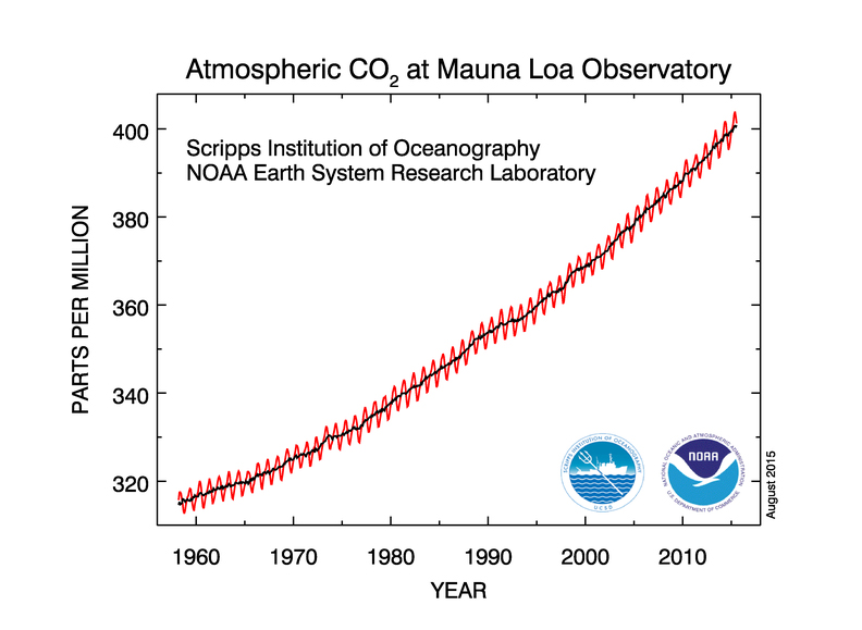 CO2 in atmosphere from 1960 to 2010